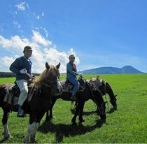牧場で乗馬