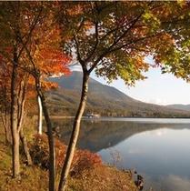 秋の女神湖1