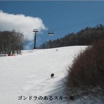 白樺高原スキー場