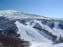 すり鉢状の峰の原ゲレンデ