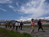 白馬の里山で今流行りのノルディックウォーキング