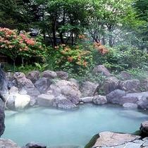 春の露天風呂は花と緑に囲まれています