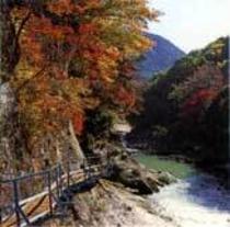 紅葉の諏訪峡