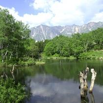 *カメラマンに人気♪鳥甲山(とりかぶとやま)が目の前に広がる天池
