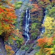 *紅葉と夫婦滝