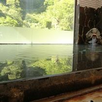 ☆内湯からは目の前いっぱいの緑を眺めてリラックス出来ます
