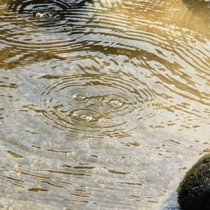 ☆ぷくぷくと河原に温泉が湧きます