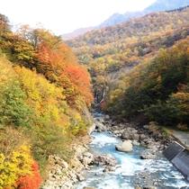 ☆バルコニーからの眺め 紅葉のパノラマ