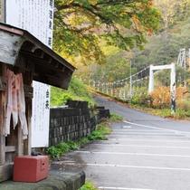 ☆散歩にピッタリな景色と空気