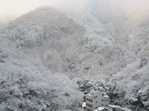 露天風呂 年に数回の雪景色