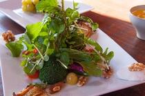 新鮮な地物野菜がたっぷりの朝のサラダ