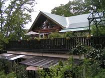 初夏、緑に包まれたログハウス全景