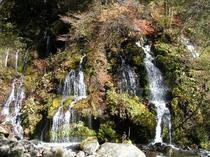 川俣渓谷・吐竜の滝
