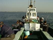 イイダコ釣り体験