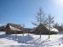 コテージ雪景色①
