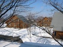 コテージ雪景色④