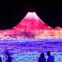 2011イルミ 富士とカップル