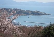 【展望台から見る景色】春