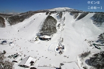 スキー場全景
