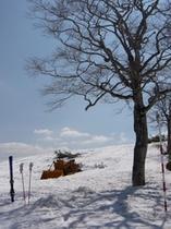 春スキーかぐら