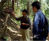 信州・信濃町癒しの森を歩いてみませんか?