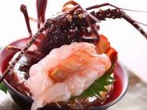 【伊勢エビのお寿司】伊勢エビ1匹をお寿司で。ほんのり身の甘さが口に広がる