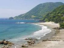 河津 今井浜海岸