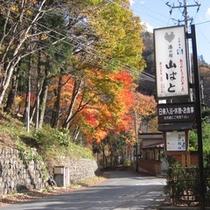【秋】看板と紅葉