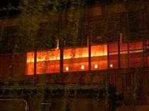 祇園白川の夜桜2