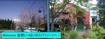 春Welcome