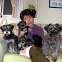 我が家の看板犬ミニチュアシュナウザーです♪