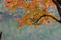 青木湖 紅葉