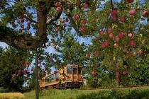 津軽鉄道とりんご