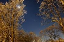 月明かりと星空
