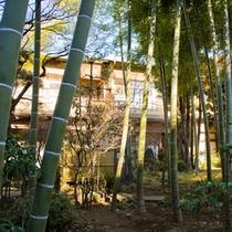 竹林庭から見る外観