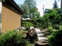 新緑の内庭