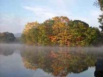 曽原湖小さな島