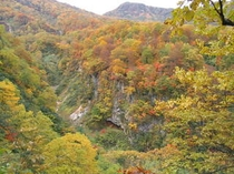 笹ヶ峰や鏡池など紅葉の素晴らしさを味わってください
