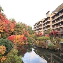 秋の四季彩一力