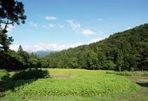小谷村風景