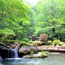 15000坪のSORAの緑溢れる日本庭園
