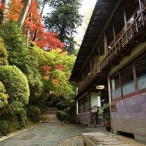 紅葉の見ごろは11月初旬~下旬。静かに色づく秋の美を見に来てください。