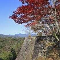 竹田岡城の紅葉