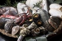 毎日入荷される新鮮な魚介たち。