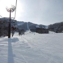 *タングラムスキー場/滑って爽快!スキー天国へ
