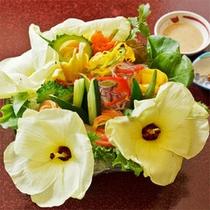 花オクラサラダ