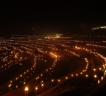 大山千枚田の夜祭り