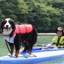 *愛犬と一緒にカヌー体験も!(板室ダム湖、ホテルよりお車35分)