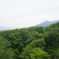 *新緑/那須高原の新緑あふれる風景に癒されよう♪