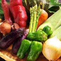 野菜贅沢でたっぷり♪